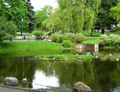 Озеленител – Парково строителство и озеленяване